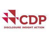 点击放大:什么是CDP?