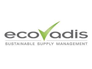 点击放大:EcoVadis社会责任 (CSR) 评估简介